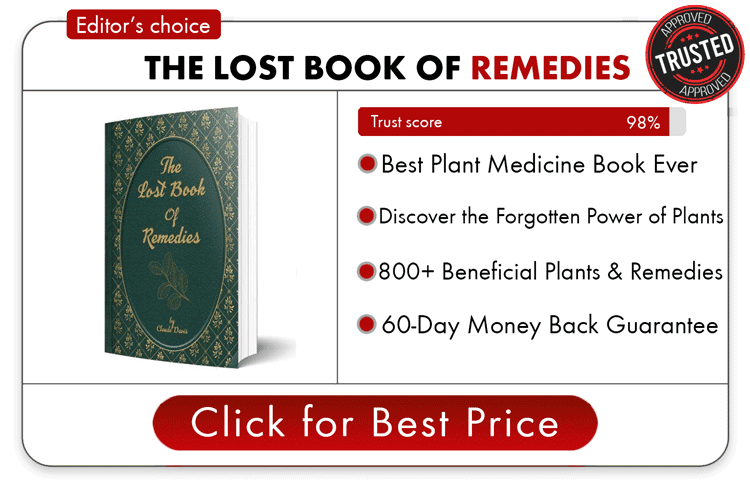 Buy the lost book of remedies today