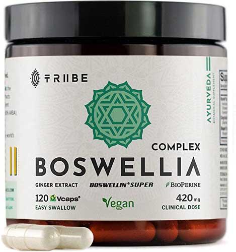 Tribe BoswellIa